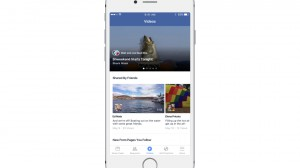 FB-videos-section
