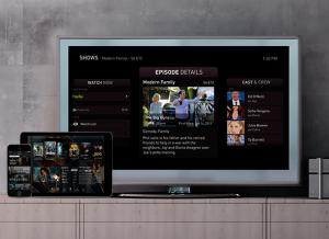 TiVo_Fan_TV