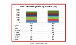 DigitalTVResearch_MENA
