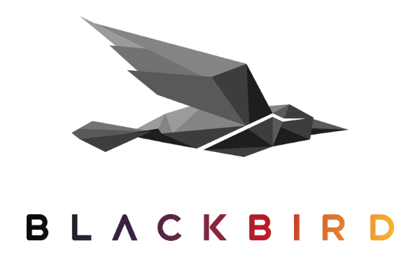Cloud Video Technology Outfit Forbidden Technologies Has Changed Its Name To Blackbird And Unveiled New Products